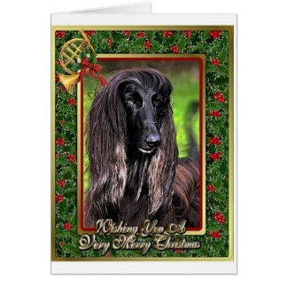 Afghan Hound Dog Blank Christmas Card