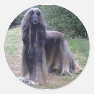 Afghan Hound Dog Classic Round Sticker