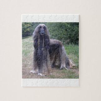 Afghan Hound Dog Jigsaw Puzzle