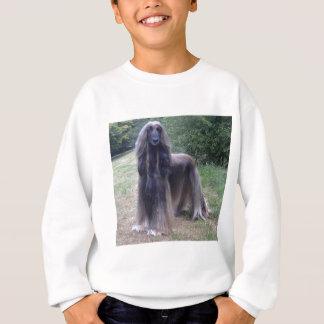 Afghan Hound Dog Sweatshirt