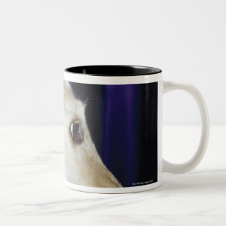 Afghan Hound wearing Tiara Two-Tone Coffee Mug