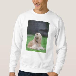 afghan-laying sweatshirt
