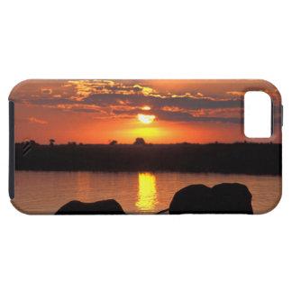 Africa, Botswana, Chobe National Park, Herd of iPhone 5 Case