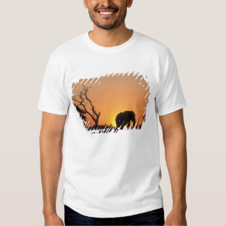 Africa, Botswana, Chobe National Park, Setting T-shirt