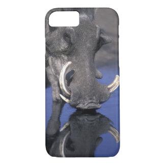 Africa, Botswana, Chobe National Park, Warthog iPhone 7 Case