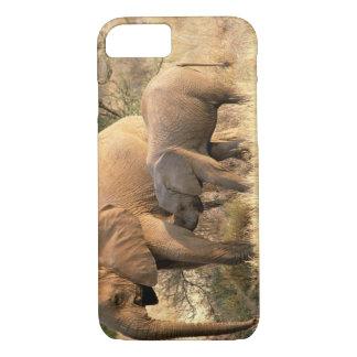Africa, Botswana, Moremi. Elephant nursing iPhone 7 Case
