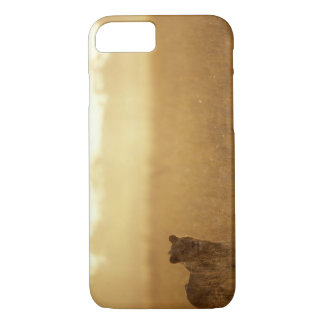 Africa, Botswana, Moremi Game Reserve, Male Lion iPhone 7 Case