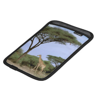 Africa, Botswana, Okavango Delta. Southern Sleeve For iPad Mini
