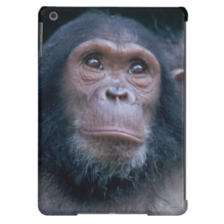 Africa, East Africa, Tanzania, Gombe National 2 iPad Air Cases