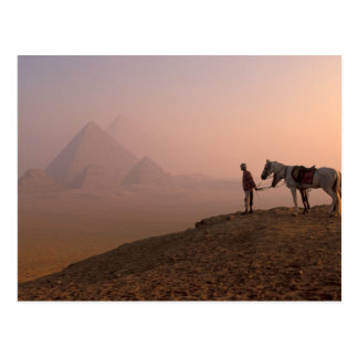 Africa, Egypt, Cairo, Giza, Giza pyramids at Postcard