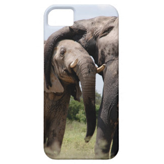 Africa Elephant Family Case For The iPhone 5