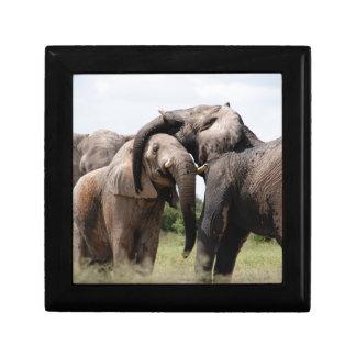 Africa Elephant Family Gift Box