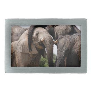 Africa Elephant Family Rectangular Belt Buckles