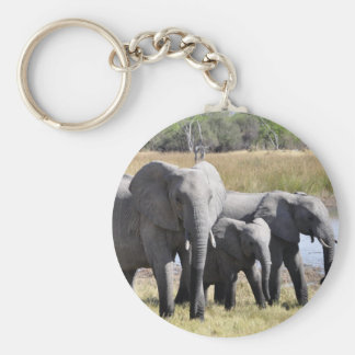 Africa Elephant Herds Key Chains