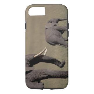 Africa, Kenya, Amboseli National Park. African iPhone 7 Case