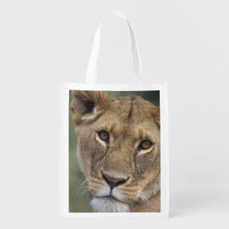 Africa, Kenya, Masai Mara Game Reserve, 2 Reusable Grocery Bags