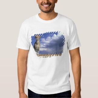 Africa, Kenya, Masai Mara Game Reserve, Adult 2 Tee Shirts