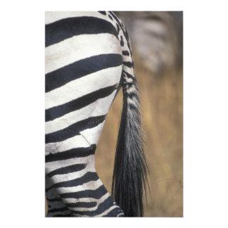 Africa, Kenya, Masai Mara Game Reserve, Photographic Print