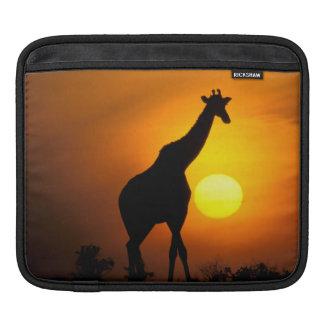 Africa, Kenya, Masai Mara. Giraffe (Giraffe iPad Sleeves