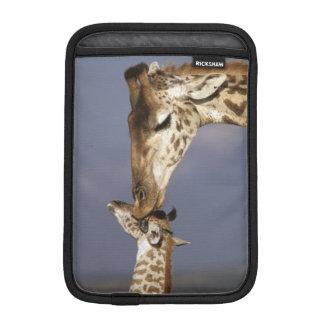 Africa, Kenya, Masai Mara. Giraffes (Giraffe Sleeve For iPad Mini
