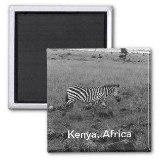 Africa Kenya Zebra in the Wild Magnet