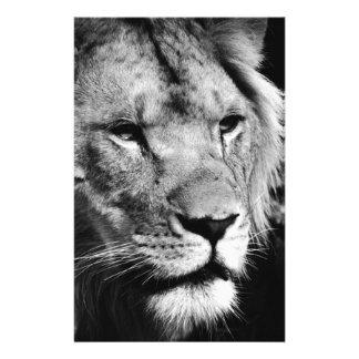 africa lion male closeup macro stationery