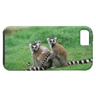 Africa, Madagascar, Antananarivo, Tsimbazaza iPhone 5 Cases