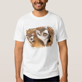 Africa, Madagascar, Berenty Private Reserve. T-shirt