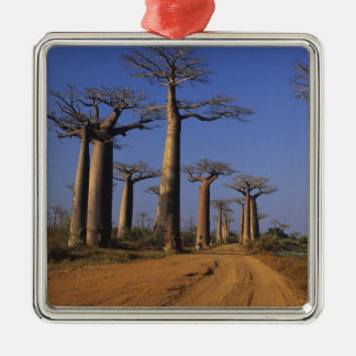 Africa, Madagascar, Morondava, Baobab Avenue. Metal Ornament