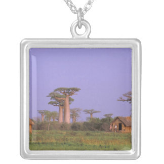Africa, Madagascar, Morondava. Baobabs Square Pendant Necklace