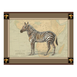 Africa Map and a Zebra Postcard