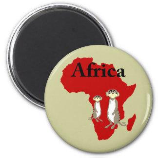 Africa meerkats magnet