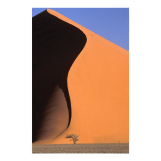 Africa, Namibia, Evening light on dunes, Photo Print