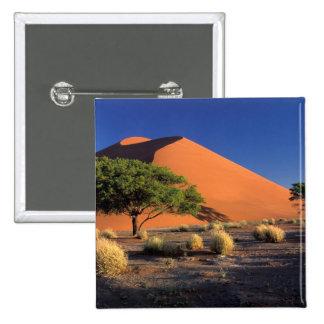 Africa, Namibia, Namib-Naukluff Park, Sossosvlei 15 Cm Square Badge