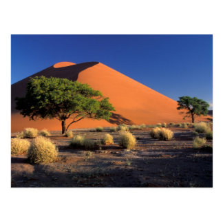 Africa, Namibia, Namib-Naukluff Park, Sossosvlei Postcard