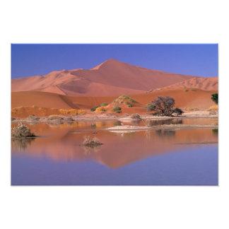Africa, Namibia. Namib-Naukluft Park. 2 Photo