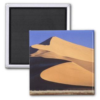 Africa, Namibia, Sesriem and Sossusvlei Namib Magnet
