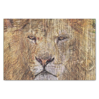 Africa safari animal wildlife majestic lion tissue paper