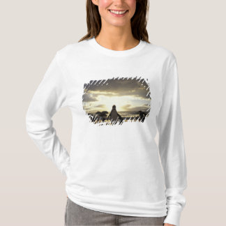 Africa, South Africa Black-footed penguins T-Shirt