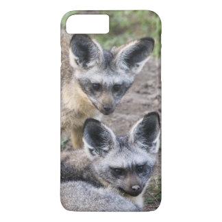 Africa. Tanzania. Bat-Eared Foxes at Ndutu in iPhone 7 Plus Case
