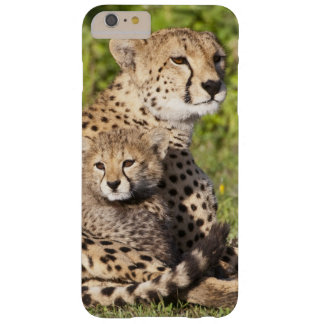 Africa. Tanzania. Cheetah mother and cubs 2 Barely There iPhone 6 Plus Case