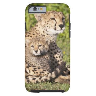 Africa. Tanzania. Cheetah mother and cubs 2 Tough iPhone 6 Case