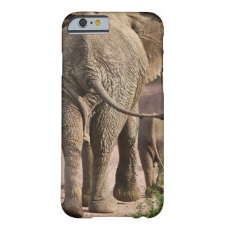 Africa. Tanzania. Elephant mother and calf at Barely There iPhone 6 Case