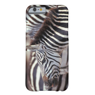 Africa,Tanzania,herd of zebras Barely There iPhone 6 Case