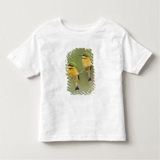 Africa. Tanzania. Little Bee Eaters at Manyara T Shirt