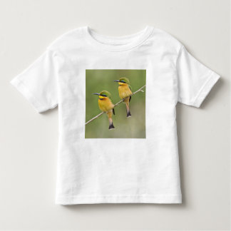 Africa. Tanzania. Little Bee Eaters at Manyara T-shirts