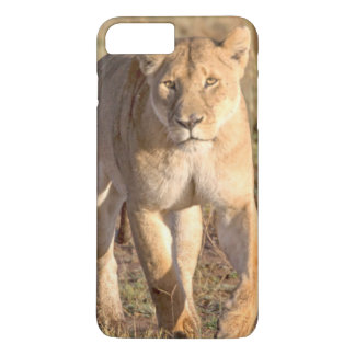 Africa, Tanzania, Serengeti. Lion And Lioness iPhone 7 Plus Case