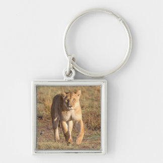 Africa Tanzania Serengeti Lion And Lioness Key Chains