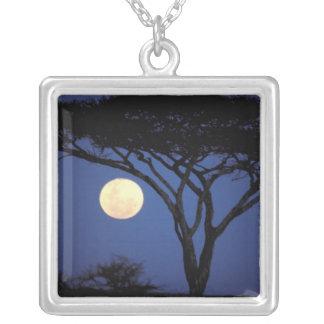 Africa, Tanzania, Tarangire. Acacia tree in Square Pendant Necklace