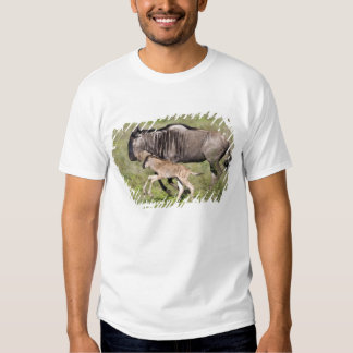 Africa. Tanzania. Wildebeest mother and baby at T-shirt